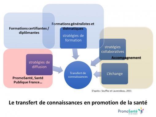 Schéma de la stratégie de formation